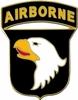 101st Airborne Division Pin