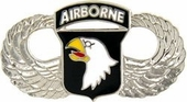 101st Airborne Division Wings Pin