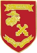 10th Marine Regiment Pin
