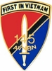 145th Aviation Battalion Pin