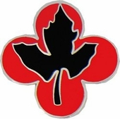43rd Infantry Division Pin