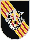 5th Special Forces Vietnam Pin