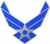 Air Force Pin (New)