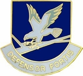Air Force Security Pin