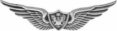 Army Aircrew Wings Pin