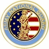 Army National Guard Pin