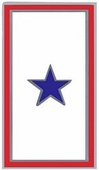Blue Star Banner Pin