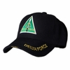 Delta Force Division Hat