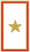 Gold Star Banner Pin
