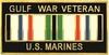 Gulf War Veteran U.S.Marines Pin