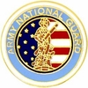 Large National Guard Emblem Pin