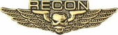 Marine Recon Wings Pin