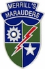 Merrills Marauders Pin