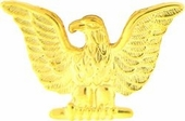 Navy Eagle Pin