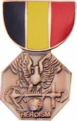Navy - Marine Corps Medal Pin