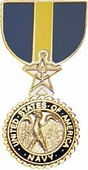 Navy/Marine Distinguished Service Medal Pin