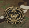 OCP Drill Sergeant Army Badge Sew On