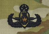 OCP EOD Explosive Ordnance Disposal Master Army Badge Sew On