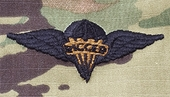 OCP Pararigger Army Badge Sew On