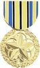 Outstanding  Military Volunteer Medal Pin