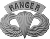 Ranger Wings Pin