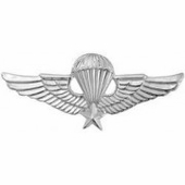 Vietnam Para Wings Badge