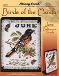 Birds Of The Month - Balimore Orioles