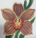 Rusty Orchid