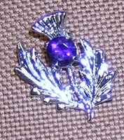 Small Thistle Brooch w/Purple Stone