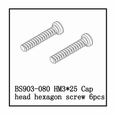 Cap Head Hexagon Screw(HM3*25)   6 PCS ~