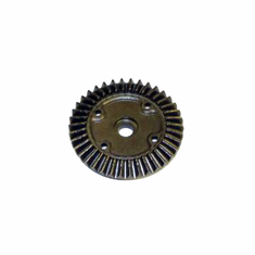 Differential Ring Gear ~