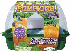 DuneCraft Grow Your Own Pumpkins