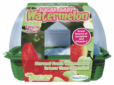 DuneCraft Sugar Baby Watermelon Kit