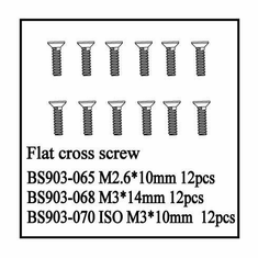 Flat Cross Screw(ISO3*10)   12 PCS ~