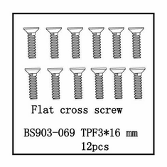 Flat Cross Screw(TPF3*16)   12 PCS ~