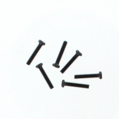 Round Head Screw M2*10 6P ~