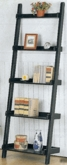 Book Shelves, Bookcases