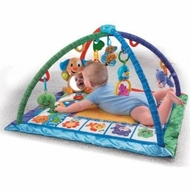 Fisher Price Songs and Smiles Discovery Gym - click to enlarge
