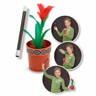 Melissa and Doug 4050 Magic Flowering Pot - click to enlarge