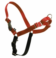 Premier ECO Easy Walk Dog Harness and Leash Medium Sedona Red - click to enlarge
