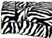 Twin Zebra Sheet Set