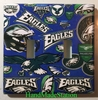 Football Philadelphia Eagles Double Cover