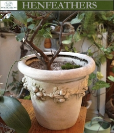 Florentine Fruit Planter {USA}n