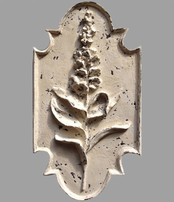 Flower Botanical Plaque - Foxglove VB {USA}