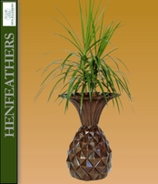 Island Pineapple Urn {USA}n