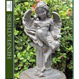 Nature Angel with Birds {USA}