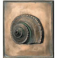 Nutmeg Shell Plaque