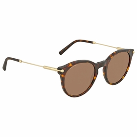 Bvlgari BV7030 504/73 51  Ladies  Sunglasses