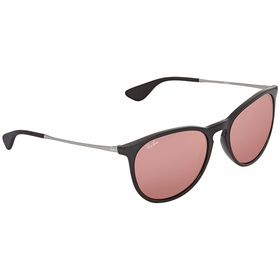 Ray Ban RB4171 601/1T 54 Erika   Sunglasses