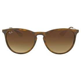 Ray Ban RB4171 865/13 54 Erika Unisex  Sunglasses